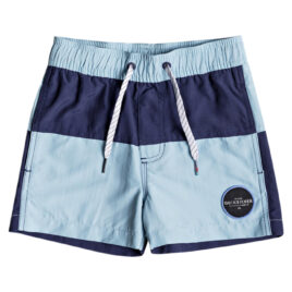 QUIKSILVER Butt Logo 10.5 Volley Boardshorts